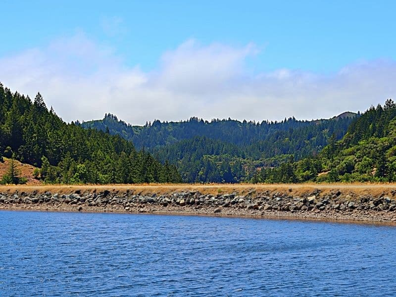 the reservoir at bon tempe lake with still water, rocks, trees on a sunny day hiking in marin county