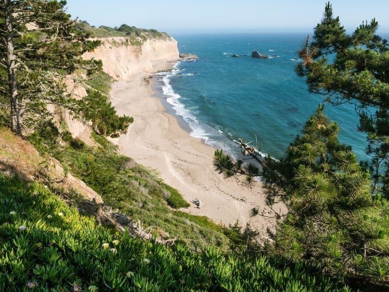 the sands on the beach of davenport california