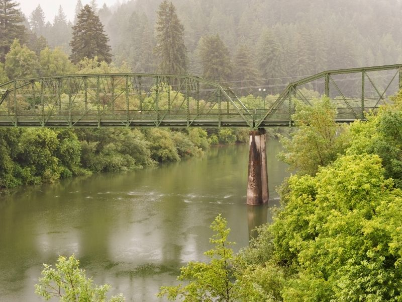 bridge going over the russian river with trees and fog