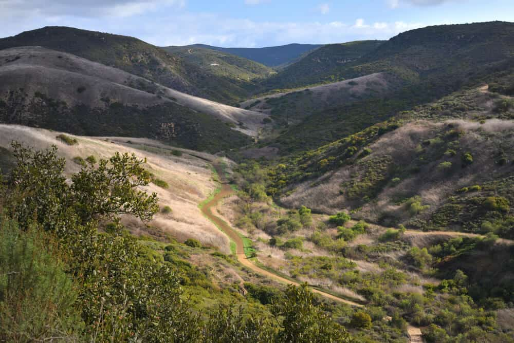 the backcountry trails of crystal cove state park hiking at moro canyon