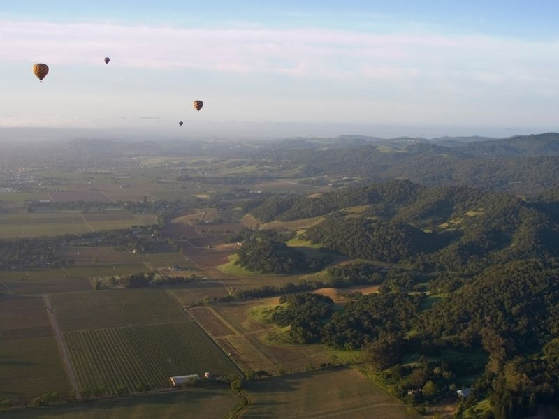 view from a hot air balloon in napa iwth views of four other balloons, vineyards below and rolling green hills.