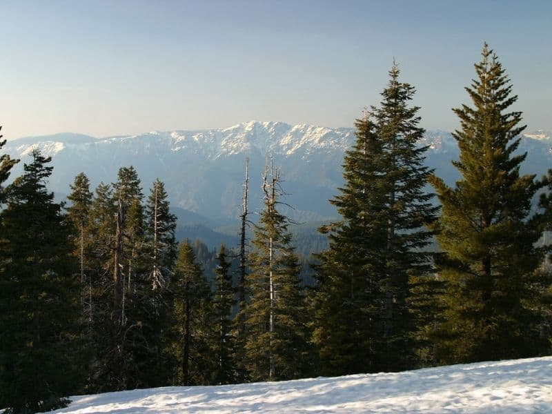 snow on the ground at kings canyon looking out onto trees and distant mountains