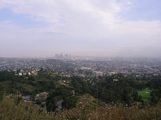 a view of the la skyline far off in the distance from the top of glendale peak in griffith park