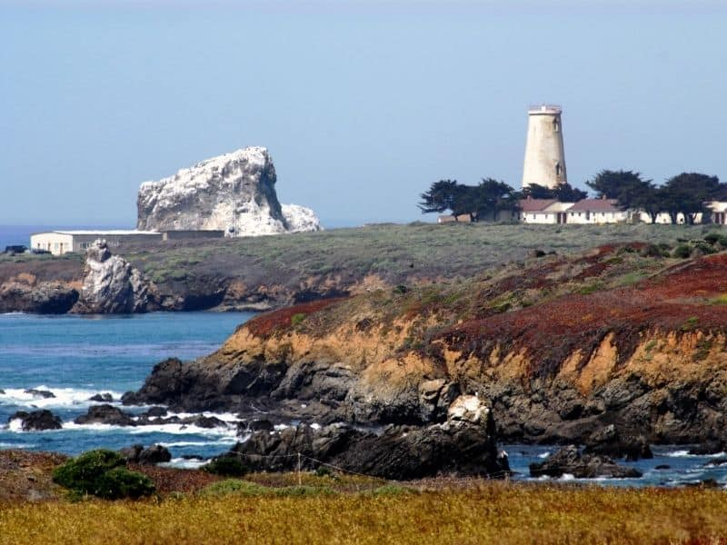 the lighthouse at piedras blancas with a white rock on the shore and red, orange and green cliffs and trees