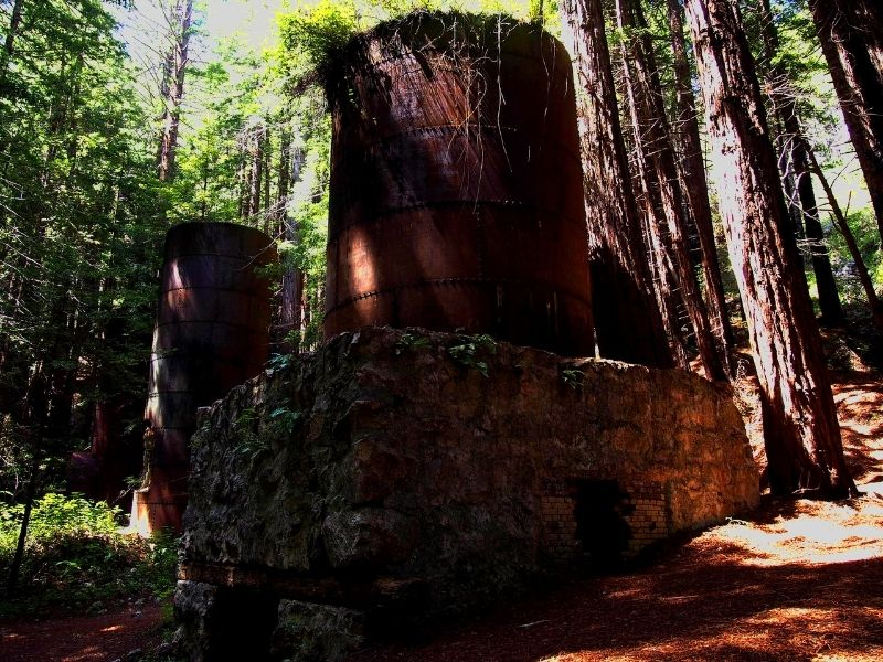 the famous lime kilns in the forest next to redwood trees