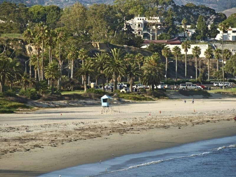 the beach on the coastline of santa barbara with palm trees, sandy beach, and houses in the distance