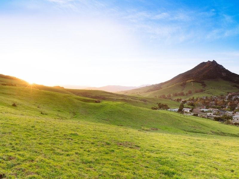 green grass in san luis obispo with the view of bishop peak behind it and the town in the valley below the mountain