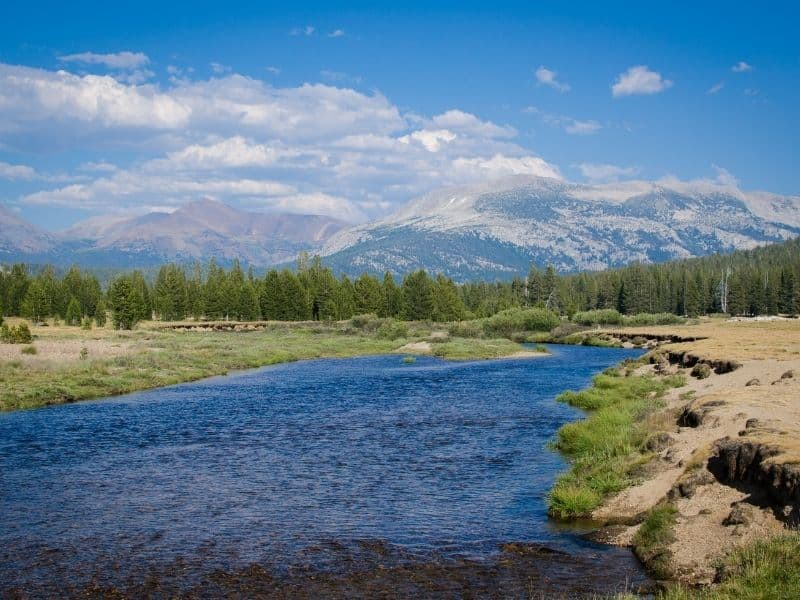 tuolumne river as seen in tuolumne meadows with beautiful water and sunny sky with some clouds