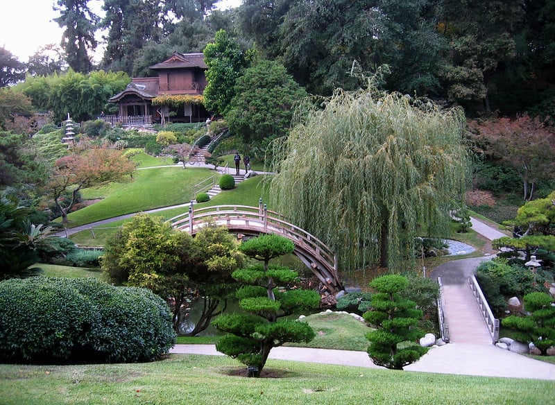 arched rond bridge, willow tree, small walkways and Japanese style gardens at the huntingon library and gardens