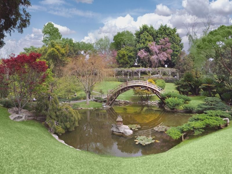 a bridge over a pond in the japanese inspired garden in huntington gardens in la