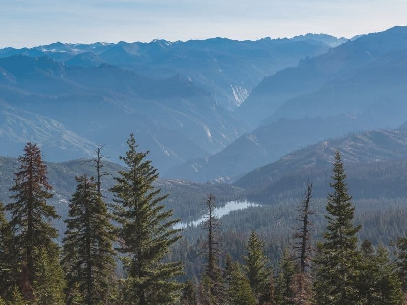 looking over the view at kings canyon national park