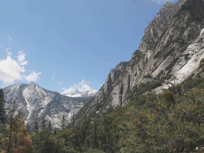 cedar grove section of kings canyon national park