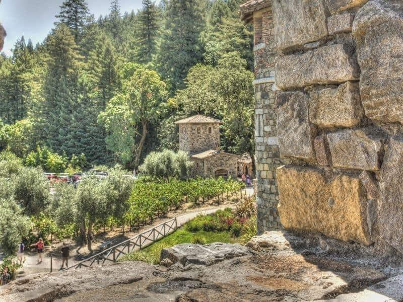view from inside the castello di amorosa wine tasting experience in Calistoga california during napa in winter